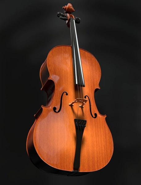 empm musique - cours individuel violoncelle